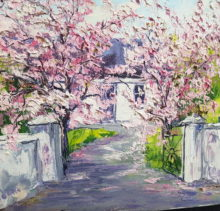 Cherry Blossom at the gate